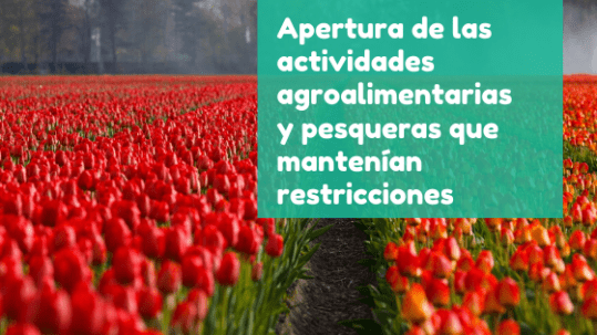 Apertura sector agroalimentario - Fase 1 - Covid19